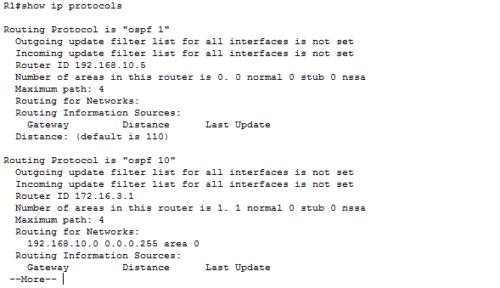show-ip-protocols
