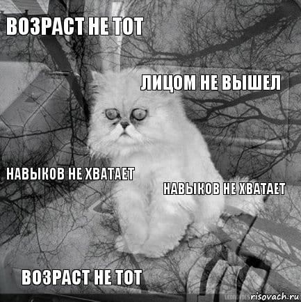 Кот в безысходности