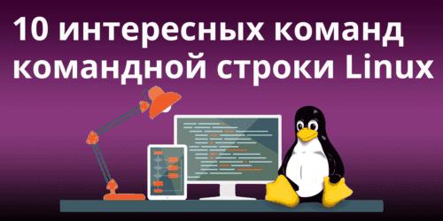 10 интересных команд командной строки Linux, которые стоит знать