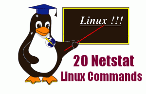 20-netstat-commands
