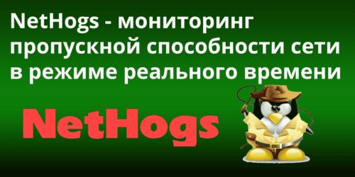 NetHogs -- мониторинг пропускной способности сети в режиме реального времени