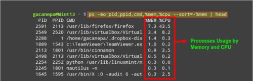 Поиск запущенных процессов использующих ОЗУ и ЦП в Linux