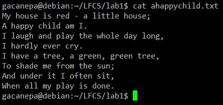 cat-command-example