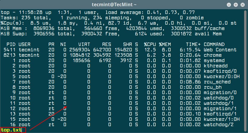 View-Output-of-Top-Command