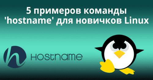 5 примеров команды 'hostname' для новичков Linux