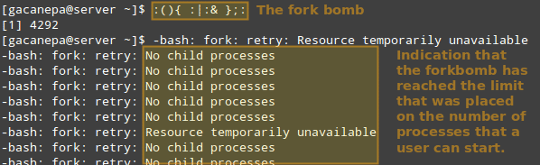 Run-Shell-Fork-Bomb