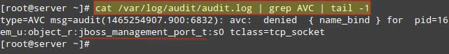 Check-Linux-Audit-Logs