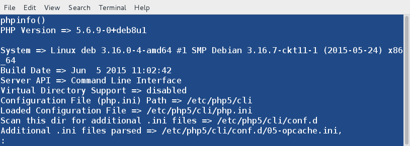 PHP-Info-Output