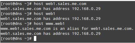 Query-DNS-on-Domain-Host