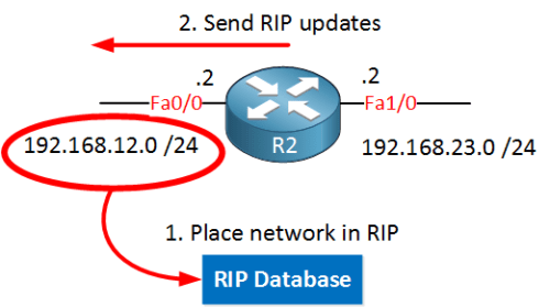 rip-advertise-one-network