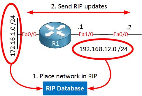 rip-send-updates-both-ways