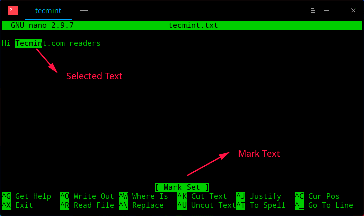 Copy-and-Paste-Text-in-Nano