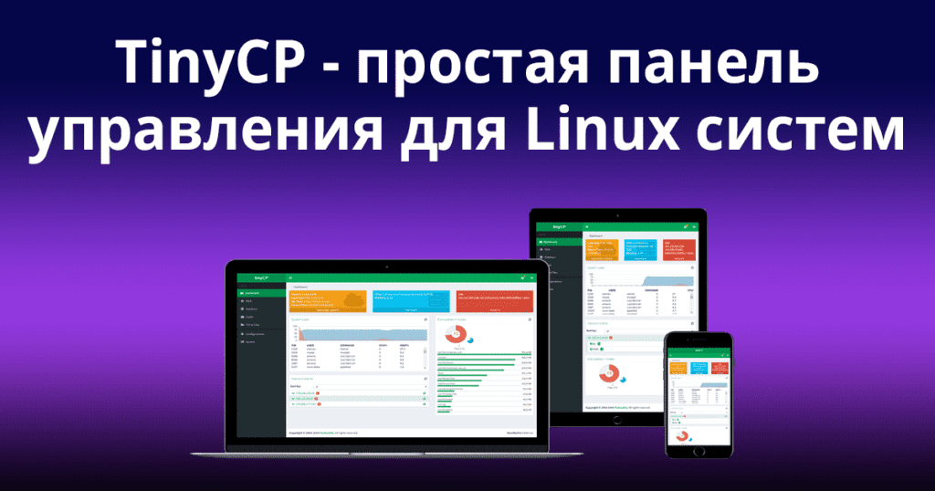 TinyCP-–-A-Lightweight-Control-Panel-for-Managing-Linux-Systems