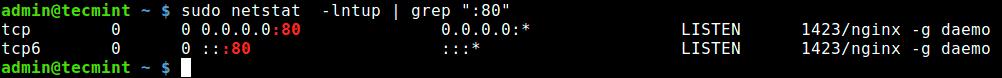 Find-Application-Using-a-Port-Number