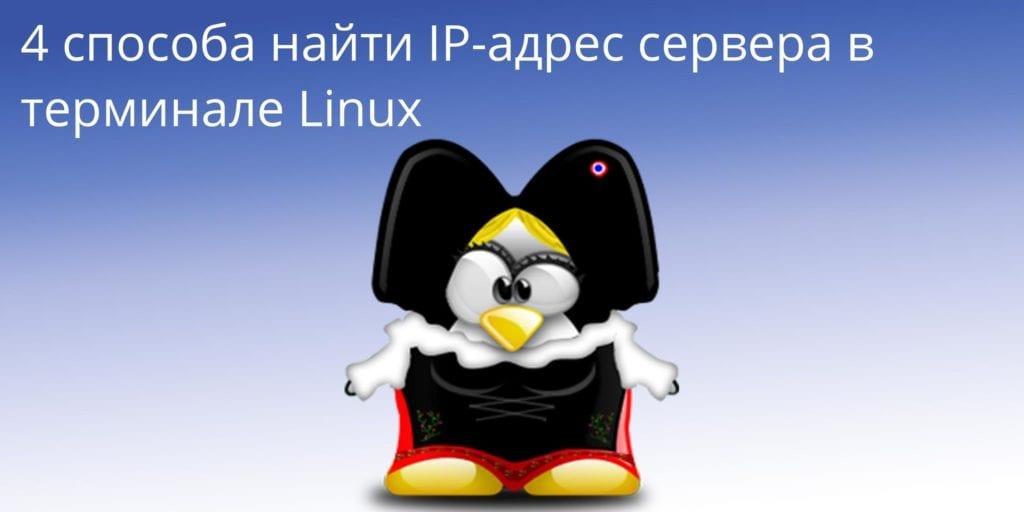4_способа_найти_IP_адрес_сервера