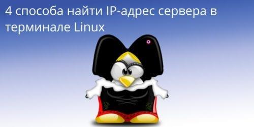 4 способа найти IP-адрес сервера в терминале Linux