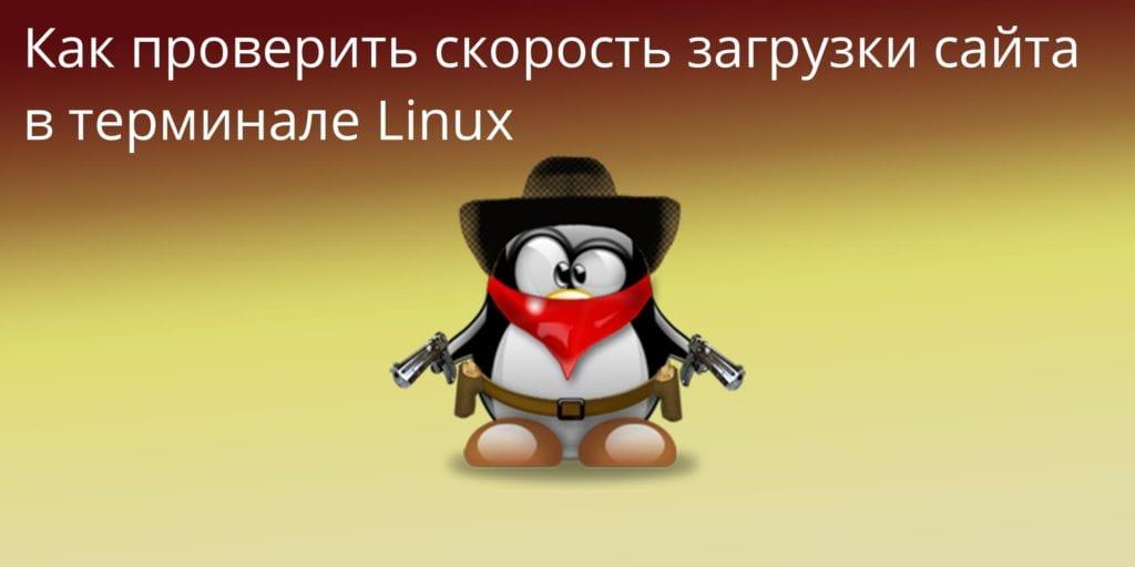 Как-проверить-скорость-загрузки-сайта-в-терминале-Linux