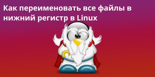 rename files - Как переименовать все файлы в нижний регистр в Linux