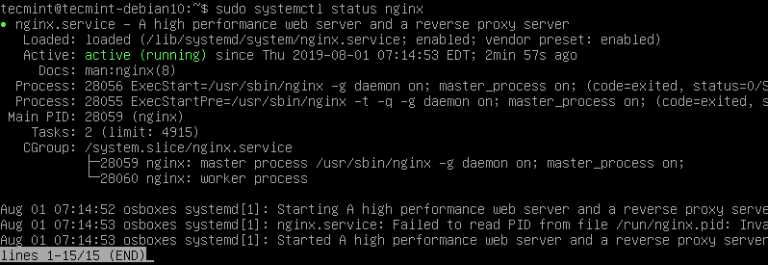 Check-Nginx-Status-on-Debian-10
