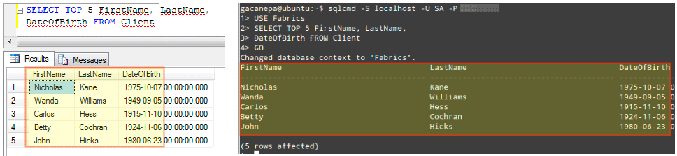 Run-MSSQL-Database-Queries-on-Linux