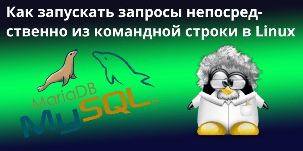 Zaprosy-s-komandnoj-stroki-v-linux-1024x512