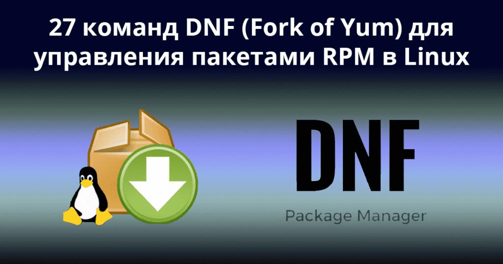 27 команд DNF (форк команды Yum) для управления пакетами RPM в Linux