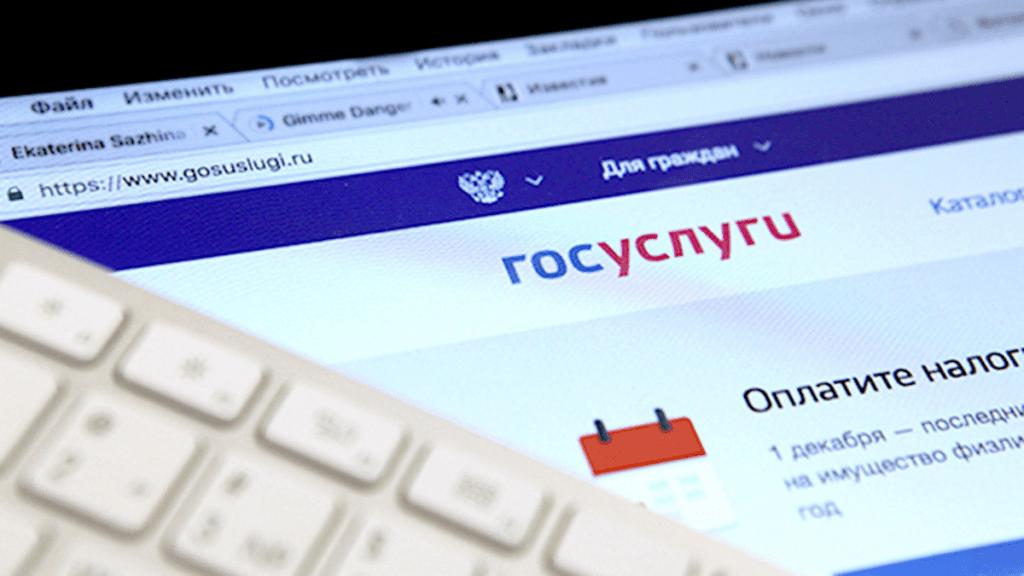В сеть попали данные пользователей госуслуг, защита информации курс лекции Воронеж
