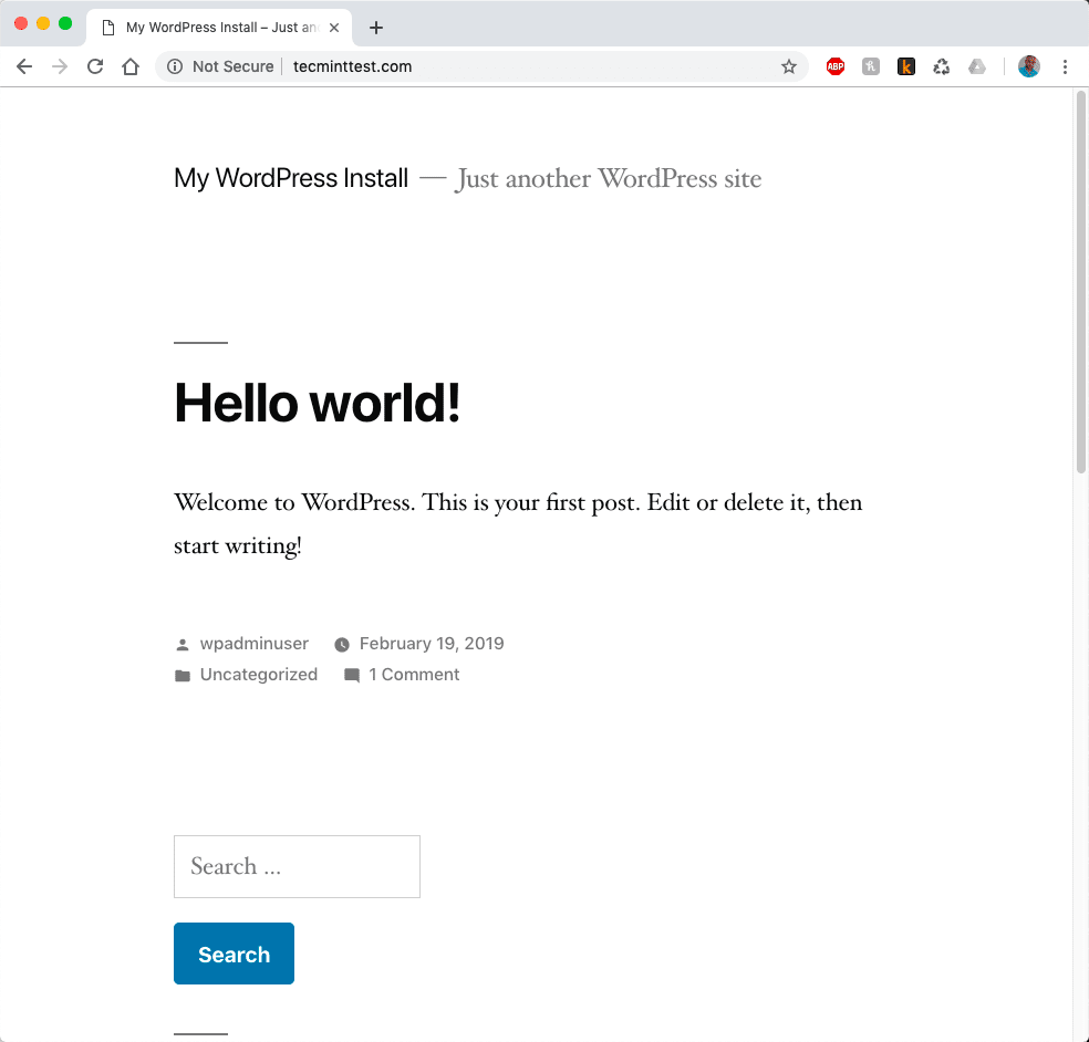 WordPress-Website-View