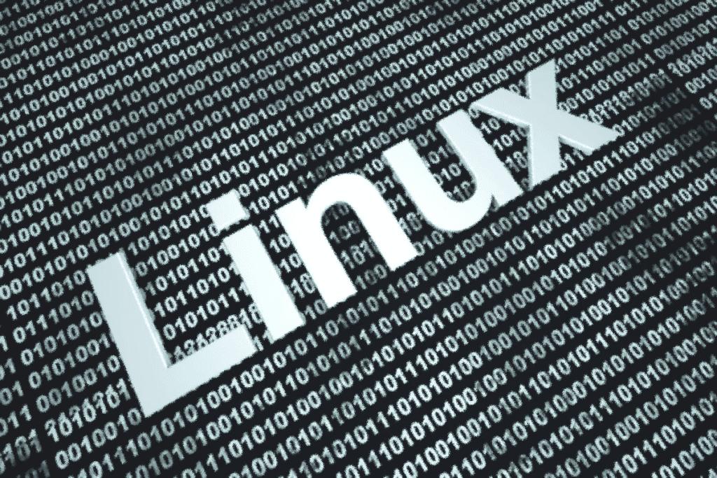 Спецслужбы России создали вирус для Linux-систем, специалист по защите информации резюме Ереван