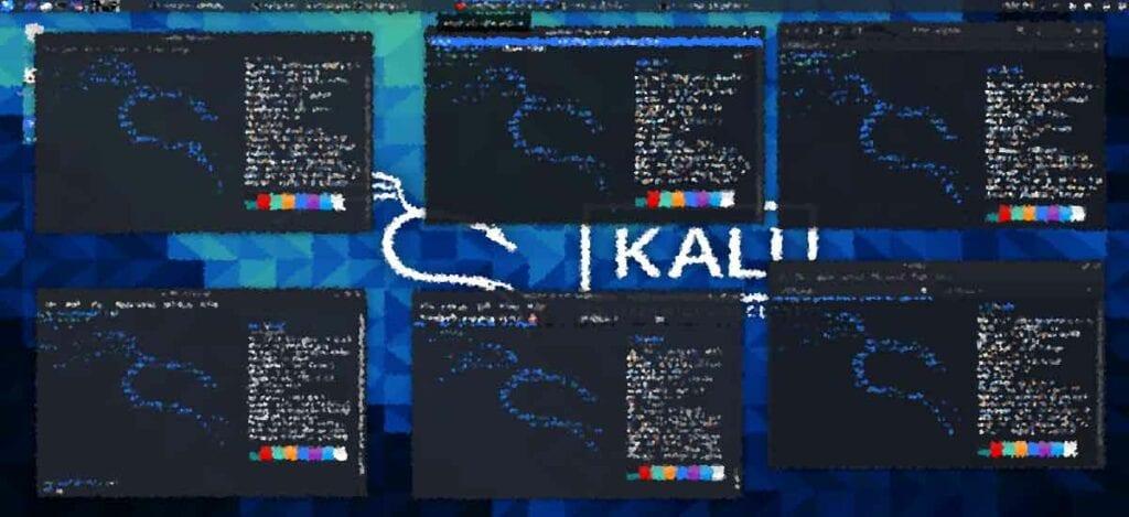 Обучение айтишников для трудоустройства, Kali Linux обучение для начинающих Киев
